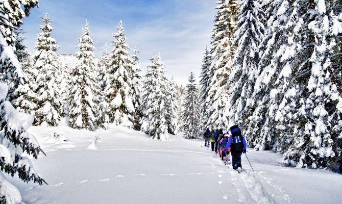 La Val di Sole (Trentino) tutto l'anno