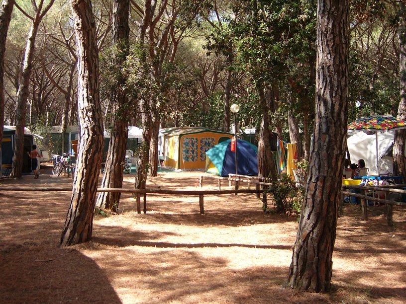 Camping Campo Regio: la Toscana tutto l'anno